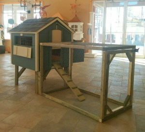 chicken coop, poulailler