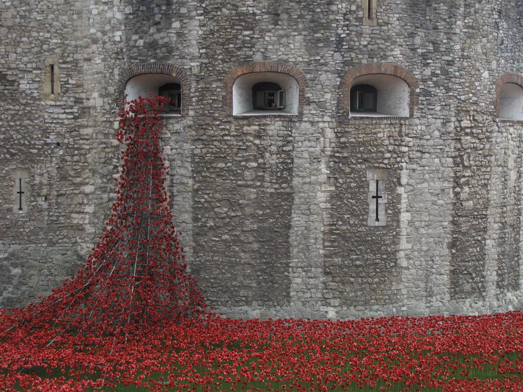 Ceramic Poppies, Tower of London (2014)