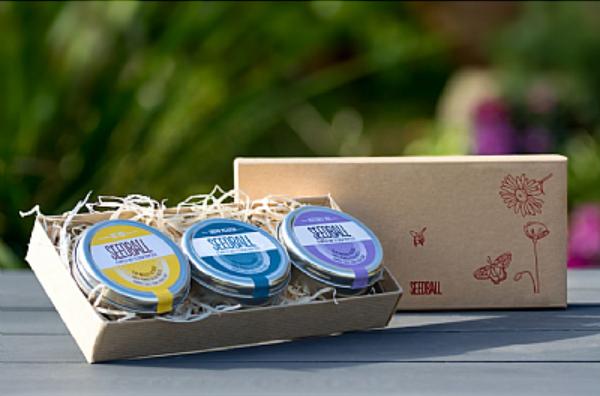 Seedball Gift Set