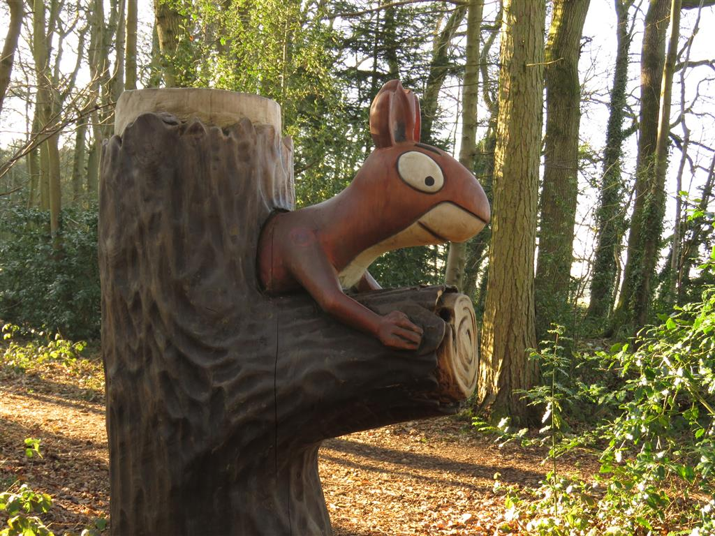 Squirrel, Zog Trail, Westonbirt Arboretum, Gloucestershire