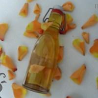 [:fr]Huile d'argan alimentaire pour les cosmétiques?[:de]Argan Öl: Kann Speiseöl in Kosmetika eingesetzt werden?[:]