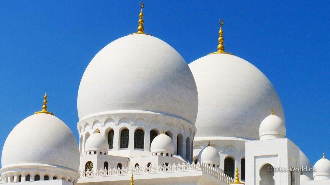 Sheikh Zayed Mosque Abu Dhabi - Domes
