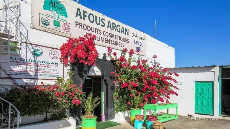 Afous Argan Factory Morocco, ligger i et område med plantager af argan træer i udkanten af kystbyen Essaouira