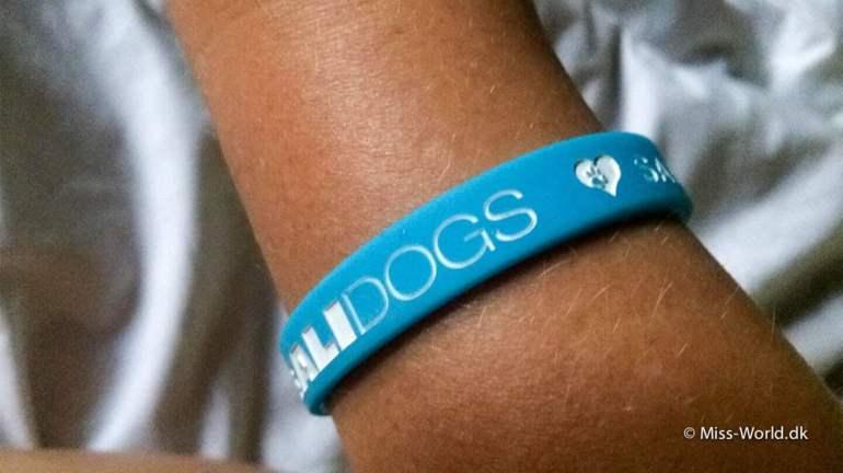 Bali Dog Wristband