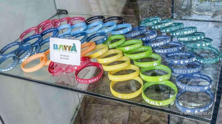 Bali Animal Welfare Association - BAWA Wristband Help the Bali Dogs by donating money