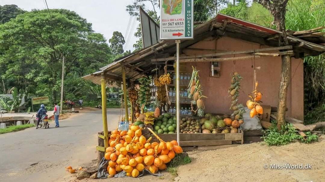 Butikken med kokosnødder og ananas i Ella ligger lige ved Waterfall Road, vejen der fører op til det bedste udsigtspunkt over Ella Gap