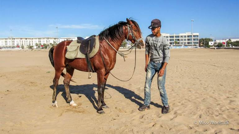 Essaouira beach - Ismail and his beautiful horse