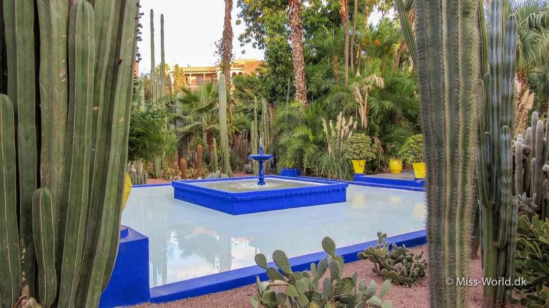 Majorelle Garden Marrakech Morocco Majorelle Garden er en af de bedste seværdigheder i Marrakech