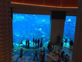 Nächster Halt: Atlantis Hotel.