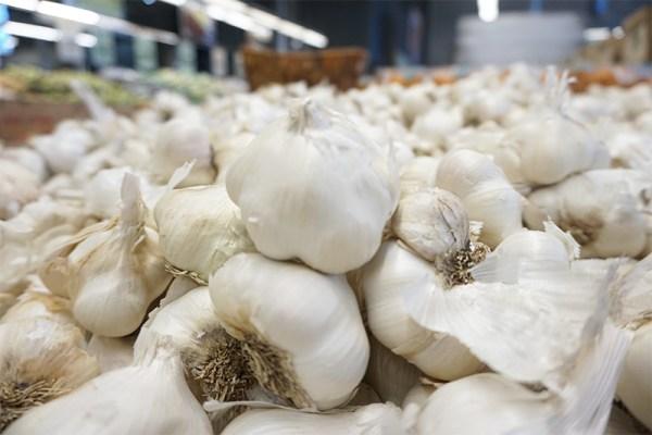 Garlic-As-Medicine