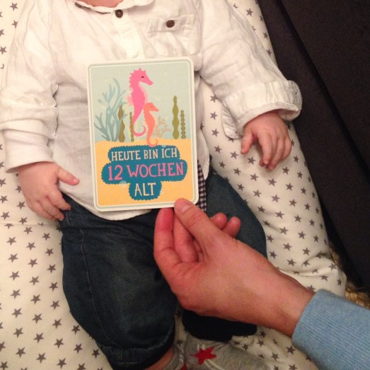 Milestone Cards Schwangerschaft Geschenk werdende Mama Mutter Geschenktipp Geburt Fotos Babyfotos kreativ individuell Schwangerschaft Babybauch Erinnerung