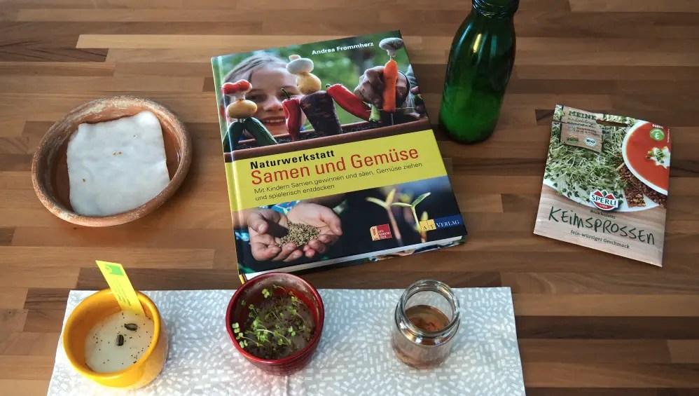 Kresse Sprossen Samen und Gemüse - Buch Kinder Naturwerkstatt gärtnern mit Kindern
