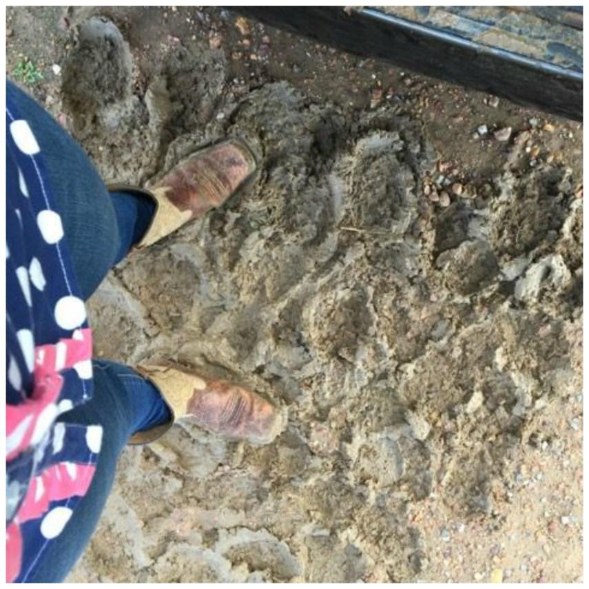 Mini School Mud 1