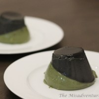 Black sesame and green tea panna cotta