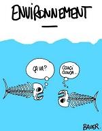 Humour poisson