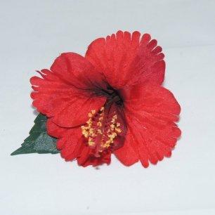hibiscus-shazam