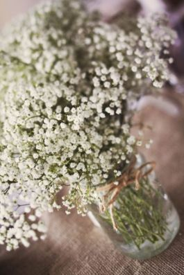 Baby's breath, a beautiful flower for your centrepieces!