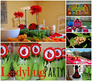 Outdoor Ladybug Garden Party Decor & Activites Include Releasing Live Ladybugs, Painting and Planting Seeds| missfrugalfancypants.com