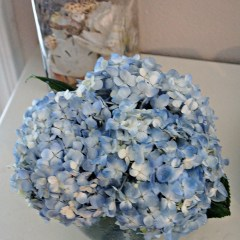Double the Life of Cut Hydrangeas