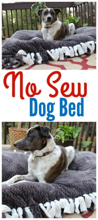 No Sew Dog Bed  Miss Frugal Mommy