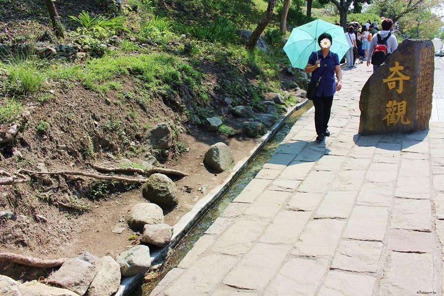 台東東河景點【水往上流奇觀】神奇的地理奇觀!騙過雙眼!視覺假象!水居然往高處流?