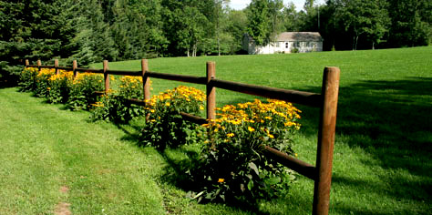 fence_field