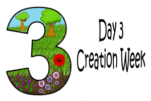 3_Day 3 Creation Week