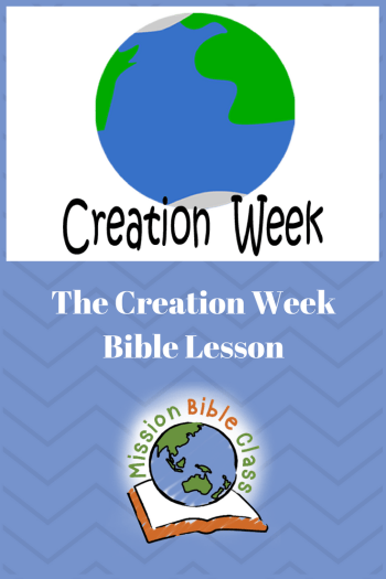 Creation Week Pin