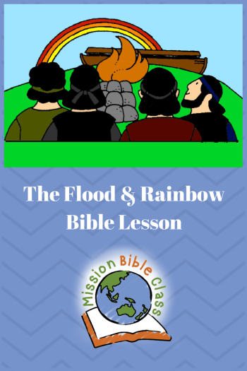 The Flood and God_s Promise Pin
