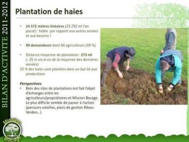 plantation-haie-mission-bocage