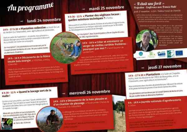 Programme Semaine de l'arbre
