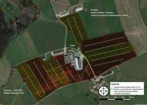 agroforesterie paddock