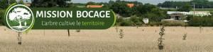 agroforesteries céréales agriculture