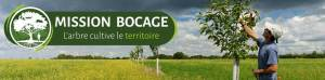 entretien agroforesterie