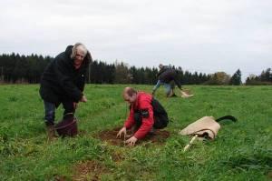 plantation-agroforesterie
