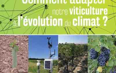 Adapter la viticulture à l'évolution du climat