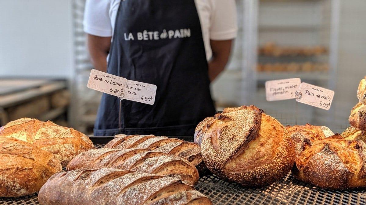 La bête à pain de Marc André Royal pour trouver des pains de qualité