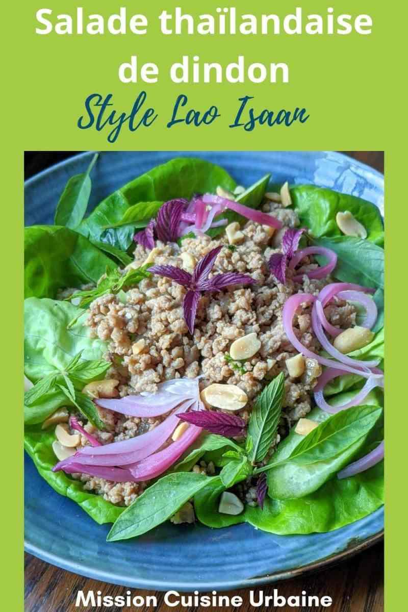 Salade Thaïlandaise de dindon de style Larb