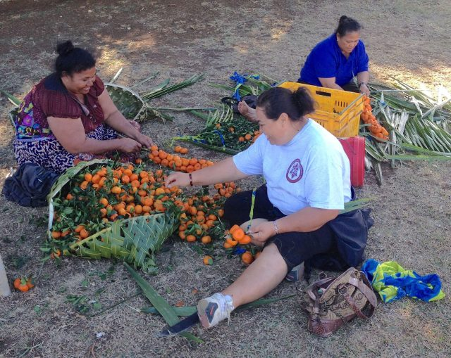30. Ladies from Vava'u weaving wild tangerines together onto coconut leaves, ready to sell for the equivalant of $1.50 per string