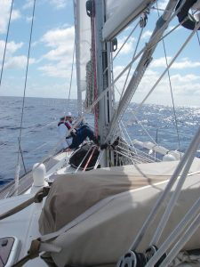 28. Flat Mr. Davis told Anne that the two foresails' roller furling devices appear to be in good shape