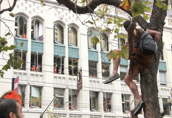 A fan watches the parade from the trees. Photo by Chelsi Moy.