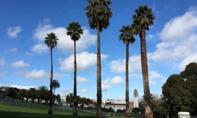 Dolores Park Glow-in-the-Dark Reopening Rescheduled