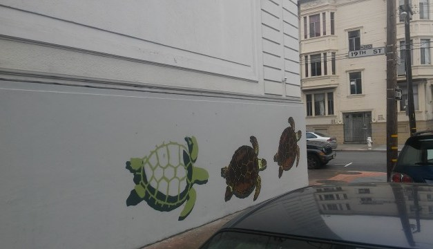 SNAP: Turtles on 19th St. PG&E Substation