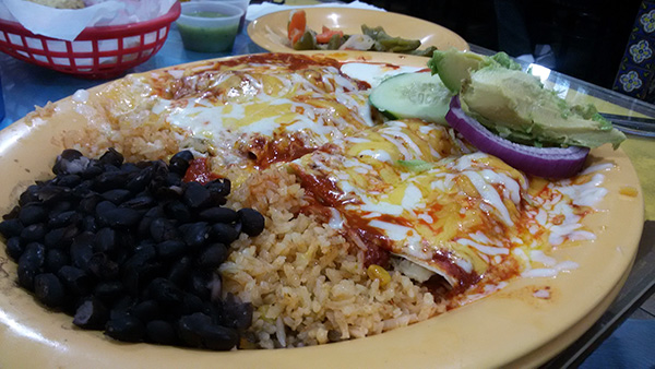 taqueria-los-coyotes-enchiladas-poblanas-mole