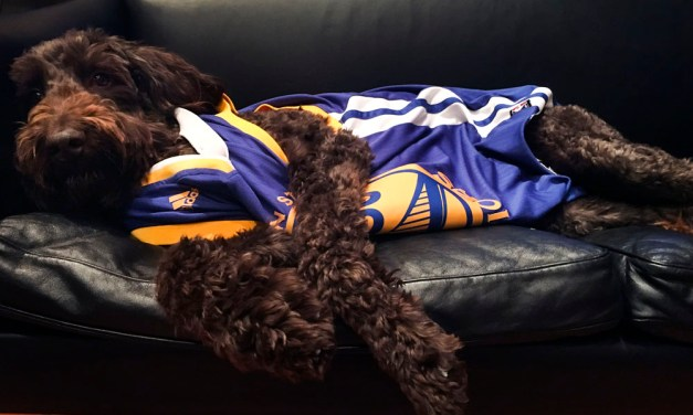 NBA finals from the Mission: Cavs throw Dubs to the dogs