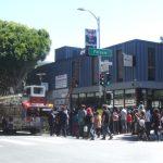 Street fair hawk drama