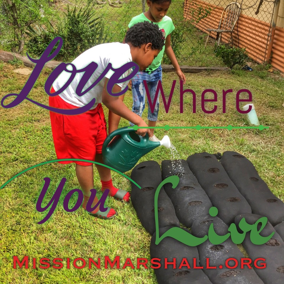 Love Where You Live Mission Marshall -Family Garden Intitiative