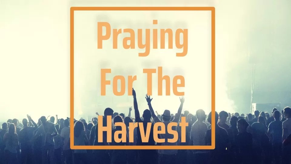 #1 Praying For The Harvest: Pray The Prayers God Burdens You With (Audio/Video)