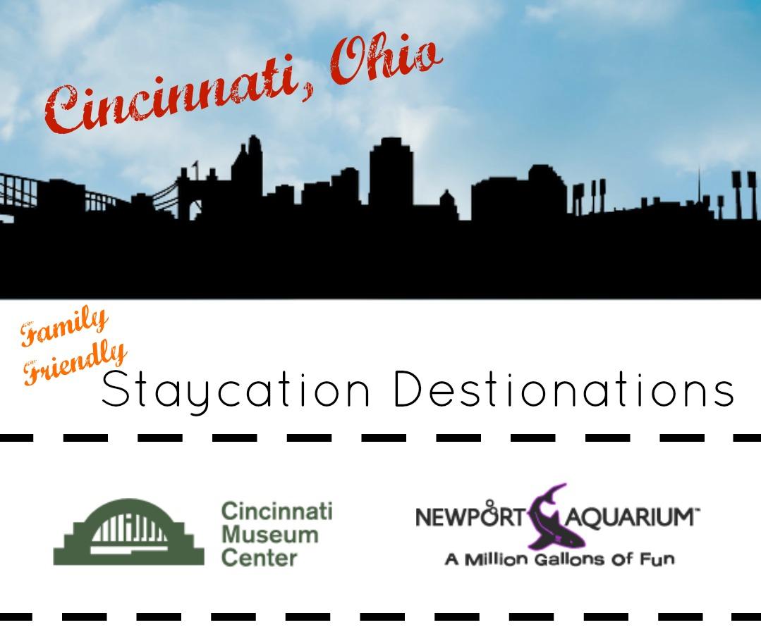 photograph about Newport Aquarium Coupons Printable titled Cincinnati Staycation Spots: The Newport Aquarium and