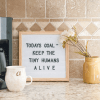 Felt Letter Board Under $15 Shipped With Limited Time Offer Amazon Coupon